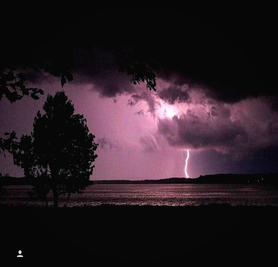 EyeEmNewHere Lightning Power In Nature Dramatic Sky Thunderstorm Weather Night Danger Tree Silhouette EyeEmNewHere