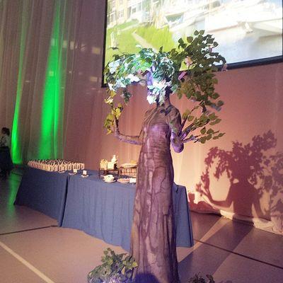 Living tree statues! Fairfield375