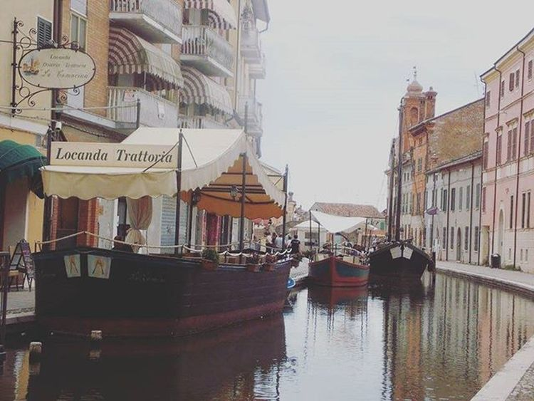Comacchio Igerscomacchio Ig_comacchio Volgoferrara Volgoitalia Igersferrara Iger_ferrara Ferraraphoto Mostrafe2015 Igersfe Myferrara Igers_emiliaromagna Emiliaromagna_friends Delphiinternational Turismoferrara Turismoer Provinciaferrara Provinciafe Follow4follow Like4like Followme Followmypic Instalike Photomypassion