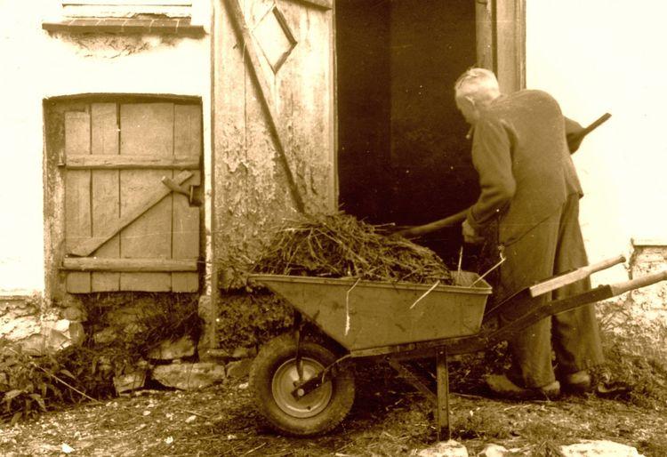 Ausmisten Ausmisten Läuft 😂👍🏼 Bauernhof Country Life Day Gardening Equipment Karre Mist Occupation Old Man One Person Outdoors People Push Cart Stall Wheelbarrow Working