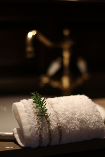 Ready for a natural relax refreshment Towel Hand Towel Tap Watertap White Towel Pine Tree Branch Gold Shimmer Unclear Background Wood EyeEm Selects Eye4photography  Black Background Close-up