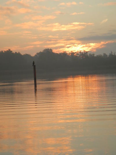Barton Broad Barton Turf Beauty In Nature Cormorant  Day Lake Lake View Lifestyles Men Nature Norfolk Norfolk Broads One Person Outdoors Real People Reflection Scenics Silhouette Sky Sunrise Sunset The Broads Tranquil Scene Tranquility Water