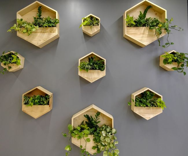 Wall Gardening Wall Hanging Wall Garden Plants Interior Decoration Office Building Creativity