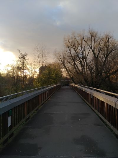 Bridge - Man Made Structure Cloud - Sky Sky Railing Tree The Way Forward Outdoors Water No People Sunset Day Nature Bird EyeEmNewHere Wanderlust Herbst Autumn Fall Germany Europe Photography Greenwarden