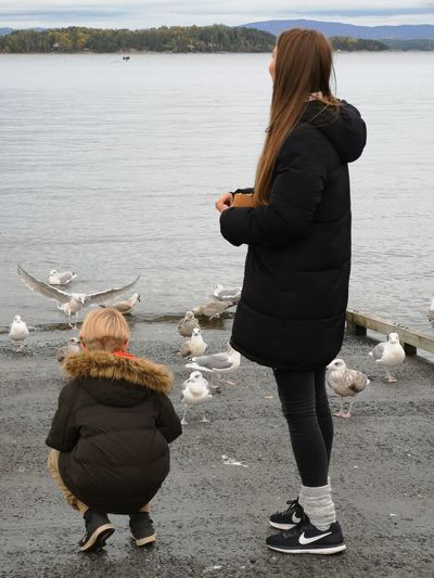 Warm Clothing Water Full Length Togetherness Young Women Women Child Beach Childhood Rear View Overcoat Family Bonds Shore