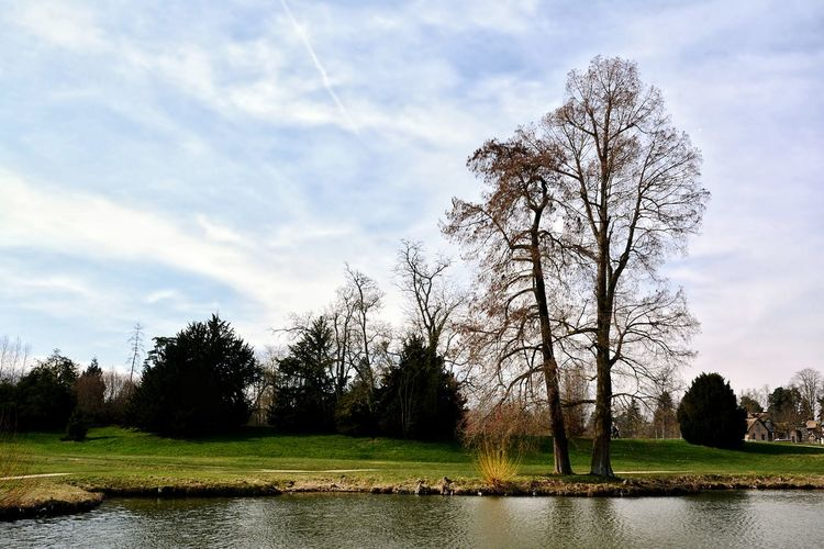 Versailles gardens last WE 🇫🇷 Nature Photography Versailles Gardens Outdoors Tree Sky Cloud - Sky Grass Countryside Calm Growing Non-urban Scene Tranquil Scene Tranquility Scenics Idyllic Lakeside Stream Lake