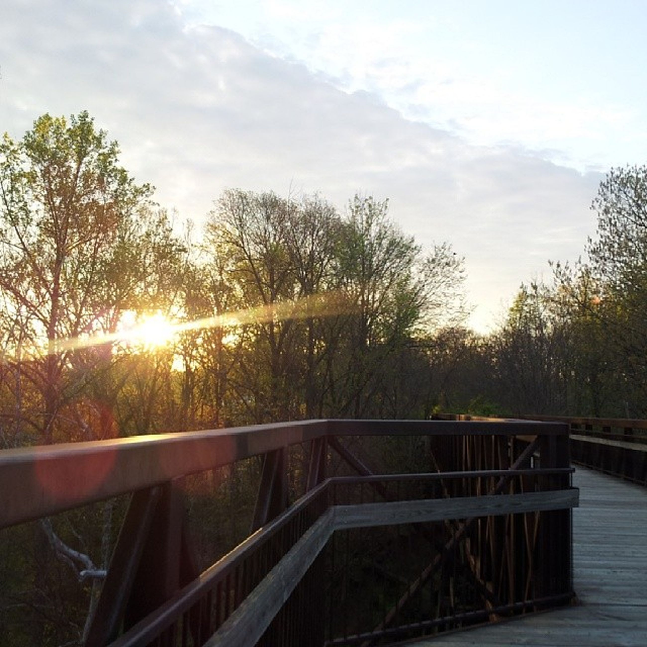 railing, tree, sun, sunlight, sky, sunset, sunbeam, tranquility, nature, bridge - man made structure, tranquil scene, fence, beauty in nature, lens flare, scenics, river, water, footbridge, wood - material, no people