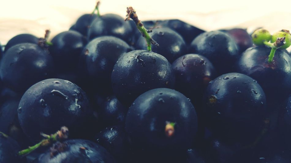 Jabuticaba Brasil Taking Photos Hello World Relaxing First Eyeem Photo