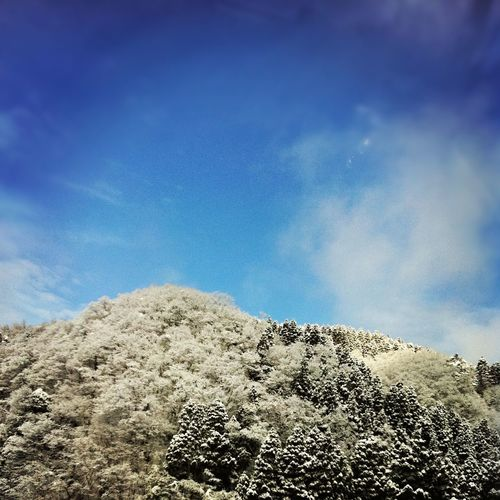 EyeEnNatureLover Nature_collection Check This Out Green Sky Sky_collection Bluesky Clouds And Sky Blue Sky Sky_ Collection Japan Photography Nature Photography Japanese Style Snow❄⛄