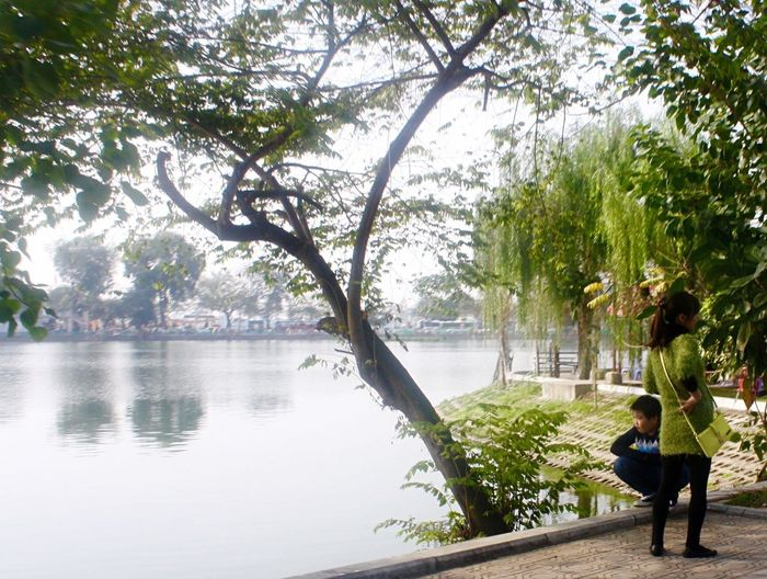 Because I Love The Colour 💝 Willow Tree Truc Bach Lake Hanoi, Vietnam Ba Dinh, Vietnam Mother And Son Waiting Peaceful Yes I'm An Amateur