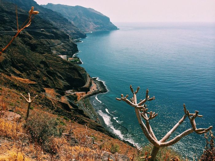 Santa Cruz de Tenerife IPhoneography