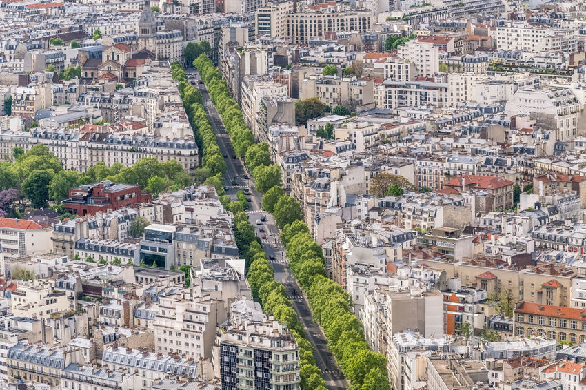 Aerial View Alley Architecture Building Exterior Built Structure Capital Cities  City City Life Cityscape Crowded Day From My Point Of View Green Color High Above High Angle View Montparnasse Outdoors Residential District Street Tourism Travel Travel Destinations Tree Viewpoint Wimmelbild