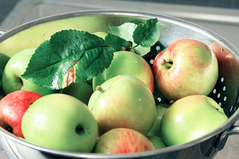 Close-up of apples in container