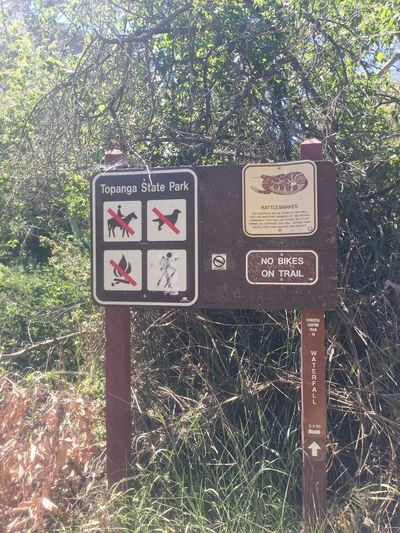 Topanga State Park HikeLife Palisades Interstate Park California