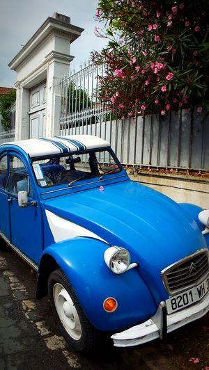 2cv Lechâteaudoléron France Cars Vintage Cars French Cars