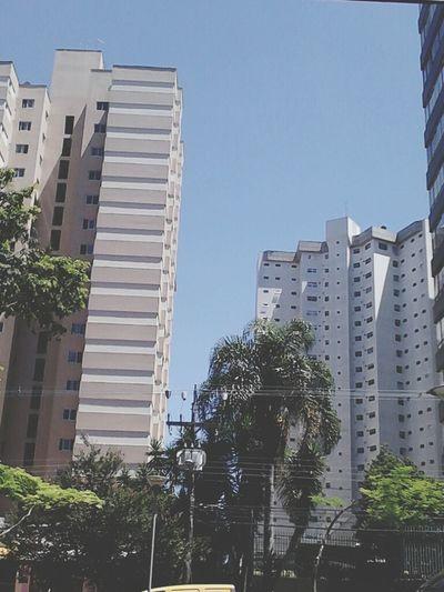 Curitibacool