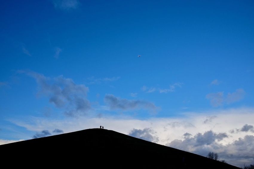 Beauty In Nature Blue Cloud - Sky Flying Low Angle View Nature Outdoors Silhouette Sky