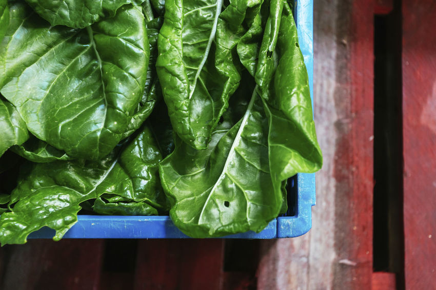 Chard Close-up Day Directly Above Focus On Foreground Food Food And Drink Freshness Green Green Color Healthy Eating Indoors  Leaf Leaves Nature No People Plant Part Raw Food Still Life Vegetable Wellbeing Wood - Material