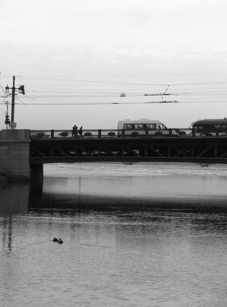 Neva river and bridge. Architecture Bird Black & White Black And White Black And White Photography Blackandwhite Photography Bridge Bridge - Man Made Structure City Life Connection Ducks Embankment Lumix Dmc-lz6 Neva Neva River People River Transportation Urban Lifestyle Urban Nature Urban Photography Urbanphotography Water