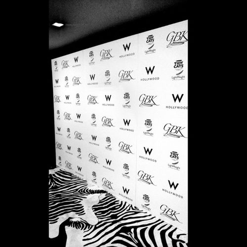 Gbkproductions Emmys2013 Whollywood Tidycats Yrflifestyle Zebra