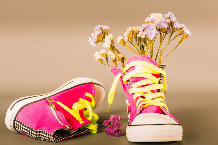 Low section of shoes on plant against colored background