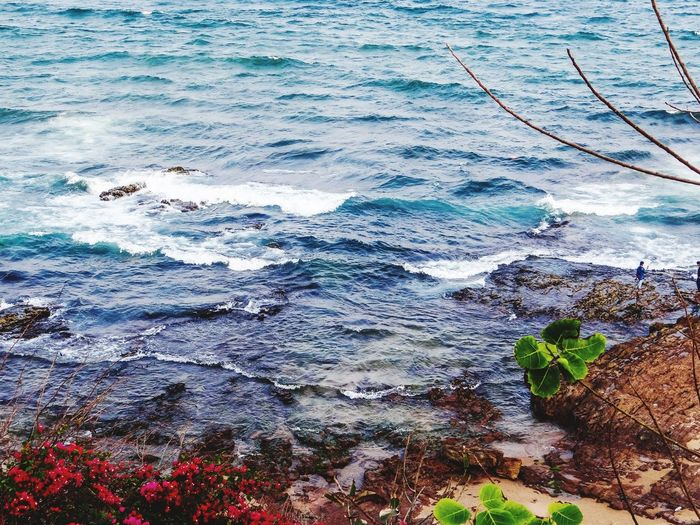 A SCENIC BEAUTY Beauty In Nature Water Day Sea Full Frame Outdoors Beach Multi Colored Nature