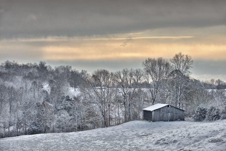 Snow covered houses and trees against sky during winter