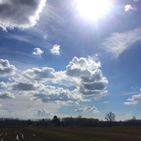 sunday Sky Sunlight Cloud - Sky Landscape Sunbeam Nature Tranquility Sun Field No People Scenics Tranquil Scene Tree Outdoors Day Beauty In Nature Growth Clouds And Sky Cloud