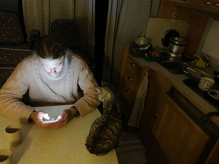 High angle view of woman using mobile phone at home