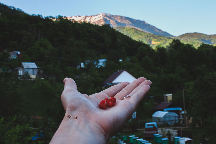 Beauty In Nature Berry Close-up Day Holding Human Body Part Human Finger Human Hand Leisure Activity Lifestyles Mountain Nature One Person Outdoors People Personal Perspective Real People Sky Strawberry Tree Colour Your Horizn