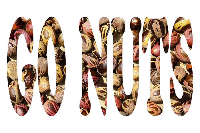 'Go Nuts' Banner Background Banner Cut Out On White Healthy Eating No People Nuts Nutty Studio Shot White Background