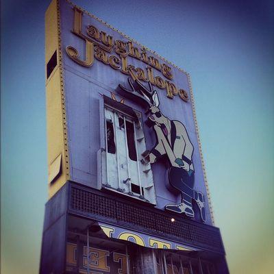 Not Laughing Anymore Laughing Neon Motel Bust  Vegasbaby Thestrip Lasvegas Timewireless