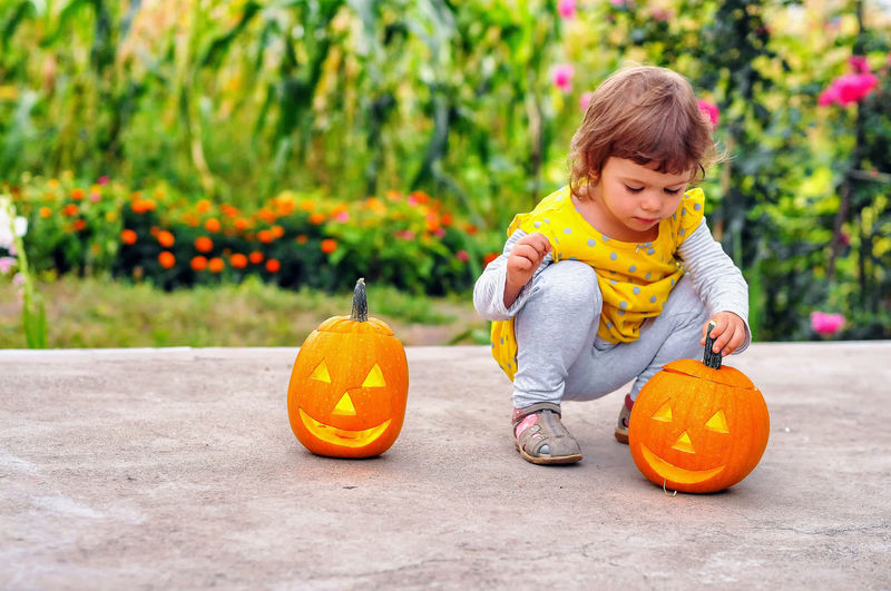 Portrait Of Cute Girl With Jack-O-Lanterns
