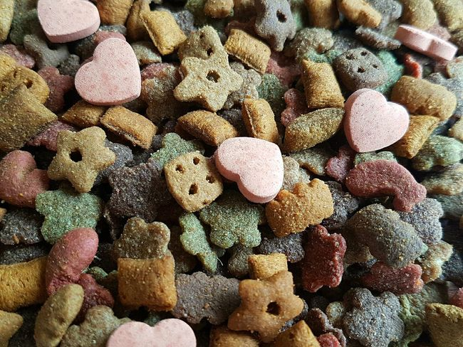 Cat treats Cat Treats Treats Animal Treats Cat Food Animal Pattern Animal Food Pet Food Pets Pattern Patterns & Textures Patterns Pattern, Texture, Shape And Form Pattern Pieces Animal Patterns Texture