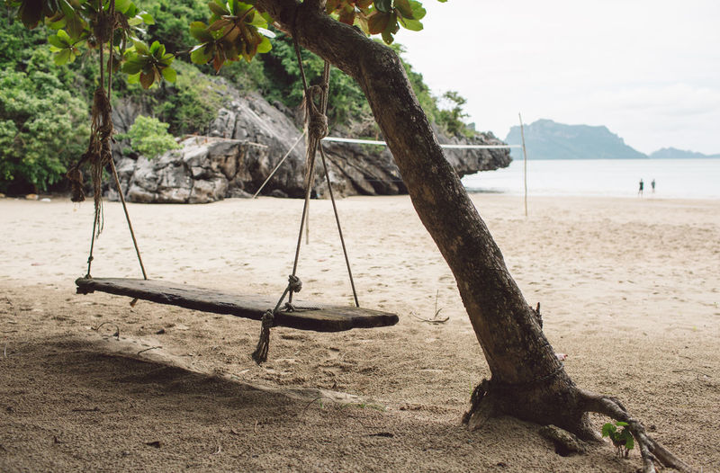 Tree Land Beach Water Plant Nature Tree Trunk Sand Trunk Tranquility Sea Day Tranquil Scene Beauty In Nature Swing Sky No People Scenics - Nature Playground Outdoors Rope Swing