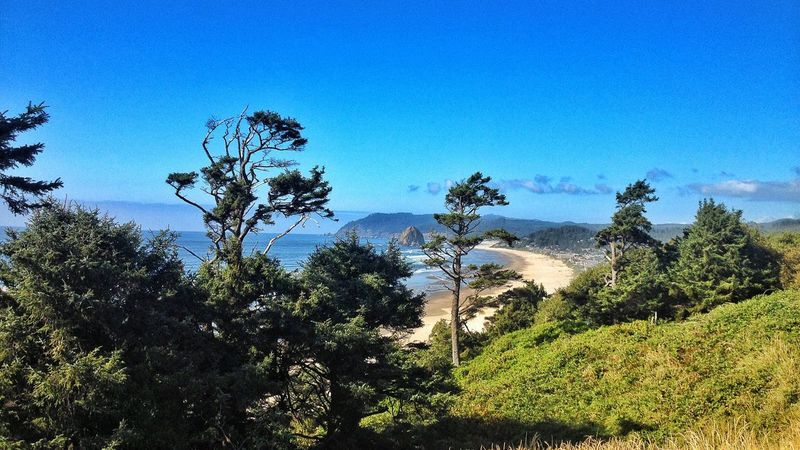 """""""The Goonies never say die!!!"""" Cannon Beach, Oregon Nature Tree Sand Beauty In Nature Blue Growth Scenics Tranquility Mountain Tranquil Scene No People Day Outdoors Forest Clear Sky Green Color Landscape Sky Plant Blue Sky"""