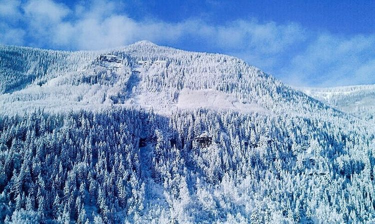 Snow Cold Temperature Winter Nature Beauty In Nature Scenics Mountain Tranquil Scene Sky Outdoors Tranquility Landscape No People Blue Remote Day Frozen Cloud - Sky Pine Tree