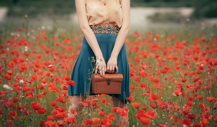 Midsection of woman standing by red flowering plants on field