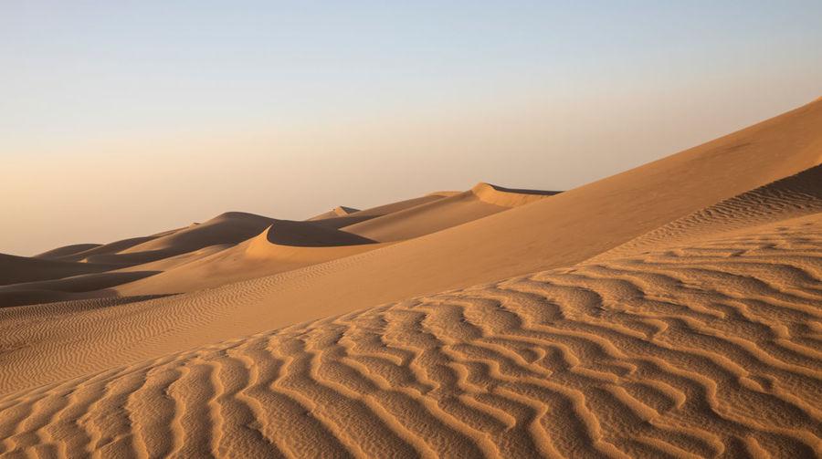 Sand dune in desert against clear sky during sunset