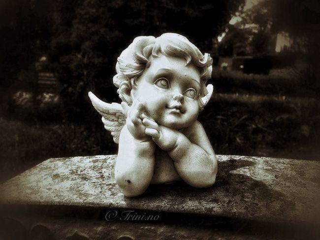 In Memoriam Sorrow Childless Riddle