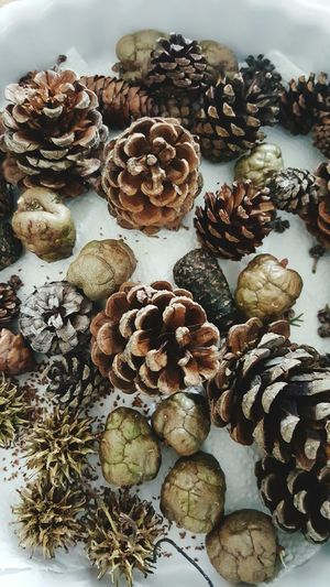 High Angle View No People Freshness Large Group Of Objects Indoors  Close-up Nature Day Pinecone Pinecones Brown Color Brown Detailphotography Beauty In Nature Focus On Foreground Card Design Detail Details Of My Life Christmas Time Nature Textured  Colours Of Life Christmas Decorations Decoration Indoors