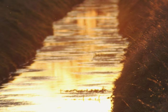 Sun On The Water Water Reflections No People Water Illuminated