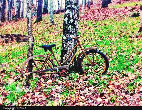"""Mountain Biking """"scenes from falling leaves"""" Laceykphotography Home North Carolina Smokeymountains Mountains Leaves Mountain View MountaInbiking Check This Out Franklin Franklin Mountains Franklin Nc Bikes Bike Bike Ride Bikelove Bikeporn"""