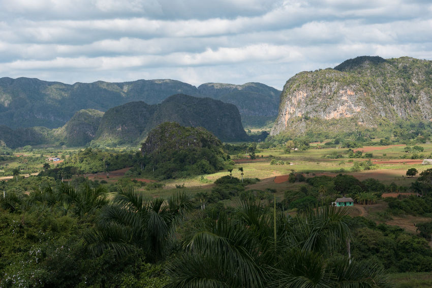 """Viñales Valley with """"Mogotes"""" Agriculture Cloud - Sky Cuba Cuba Collection Day Landscape Mogotes Mountain Nature No People Outdoors Scenics Sky"""