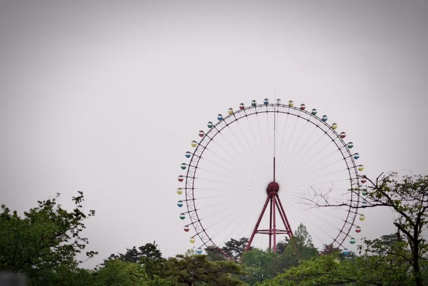 Amusementpark Ferris Wheel 遊園地 観覧車