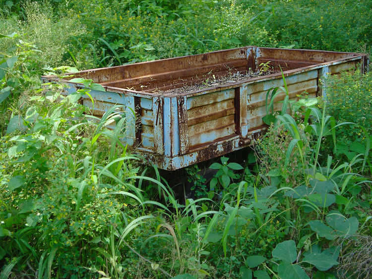 Rusted old wooden hand cart Nature Weathered Abandoned Agriculture Cart Carved Day Field Green Color Growth Hand Cart Land Leaf Metal Mode Of Transportation Nature No People Old Outdoors Plant Rusted Stuck Wood - Material Wooden Wooden Cart EyeEmNewHere