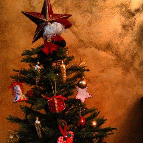 Christmastime Tree Santaclause December winter