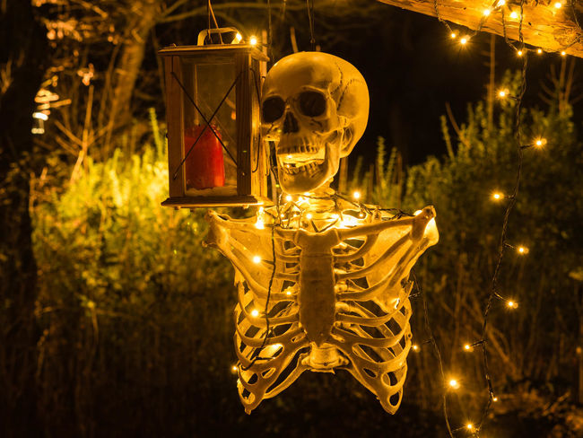 Halloween Skelett Celebration Christmas Christmas Decoration Christmas Market Close-up Electricity  Glowing Hanging Illuminated Lantern Light Bulb Lighting Equipment Night No People Outdoors