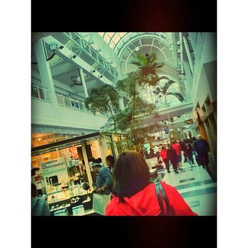 Photography♥