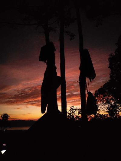Silhouette people standing by tree against sky during sunset